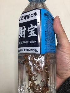 花椒水作り その2